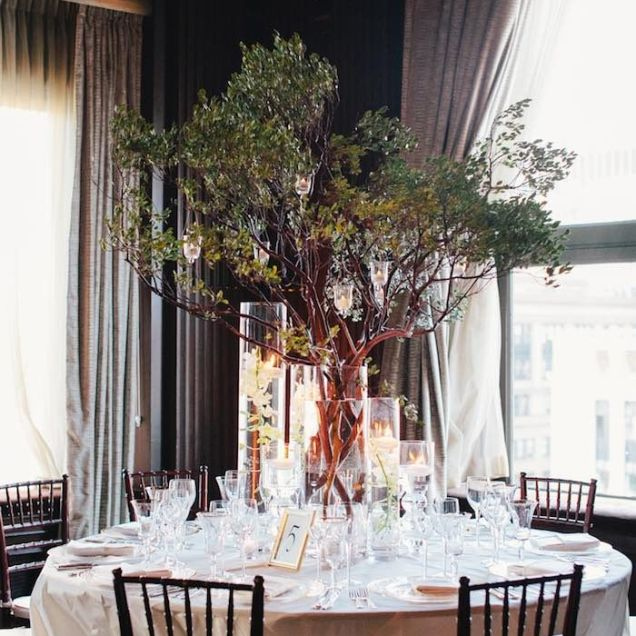 Best Tree Centerpieces For Wedding Contemporary
