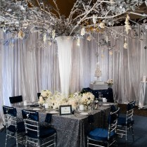 Glamorous Navy Silver And Whit