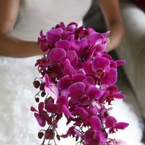 Orchid Wedding Bouquets In Brilliant Colors