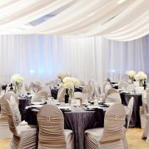 Silver Jubilee Wedding Anniversary Party Ideas
