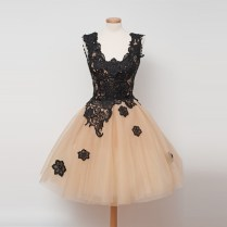 Vintage Ball Gown Champagne Homecoming Dresses With Black Lace