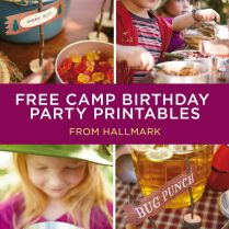 Camping Birthday Party Ideas Camp Way Over The Hill