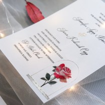 But A Rose – Vintage Beauty And The Beast Inspired Uv Printing