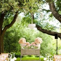 Vintage Backyard Wedding Ceremony Backdrop