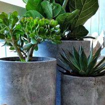70 Diy Planter Box Ideas Modern Concrete, Hanging, Pot & Wall Planter