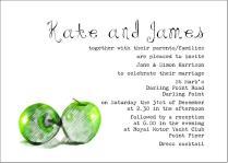 Wedding Invitation Wording Couple Hosting — Wedding Academy