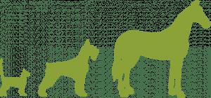 silhouette animali