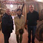 Visite de la distillerie des Menhirs
