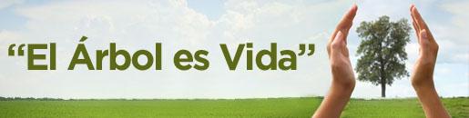 programa 'El Árbol es Vida', promovido por la Fundación Española de la Madera,