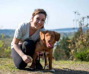 dog trainer bellingham