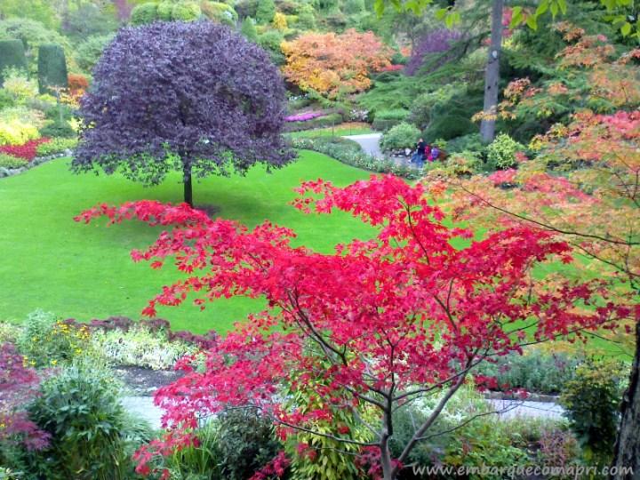 The Butchart Gardens outono no Sunken Gardens