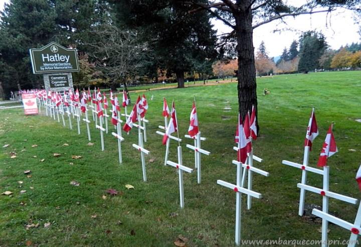 Esse cemitério na Grande Victoria todos os anos coloca essas cruzes em homenagens aos soldados