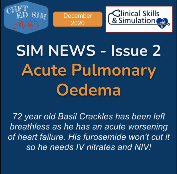 SIMNEWS- Issue 2