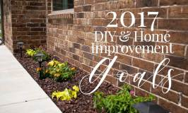 DIY & Home Improvement Goals for 2017