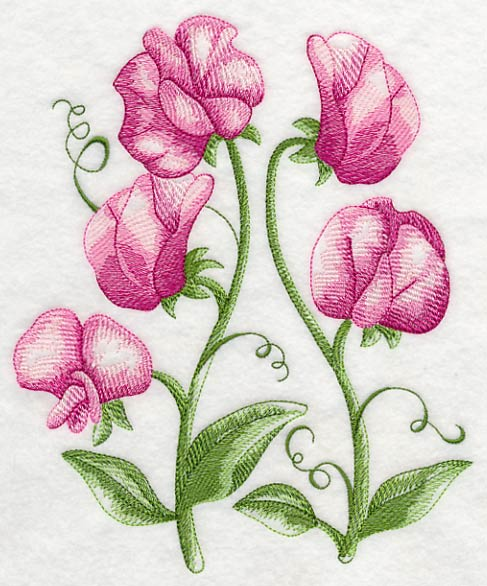 sweet pea embroidery # 19