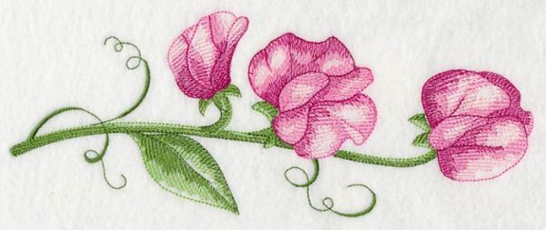 sweet pea embroidery # 27