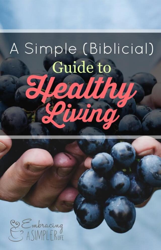 a simple biblical guide to healthy living