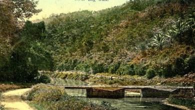 Photo of THE APPEASEMENT OF WATER DEITIES (THE FLAT BRIDGE STORY)