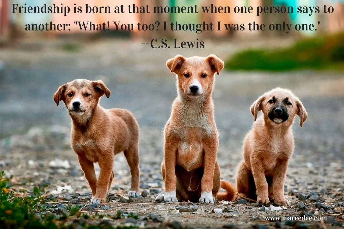 """Friendship is born at that moment when one person says to another. """"What! You too? I thought I was the only one."""" --C.S. Lewis"""