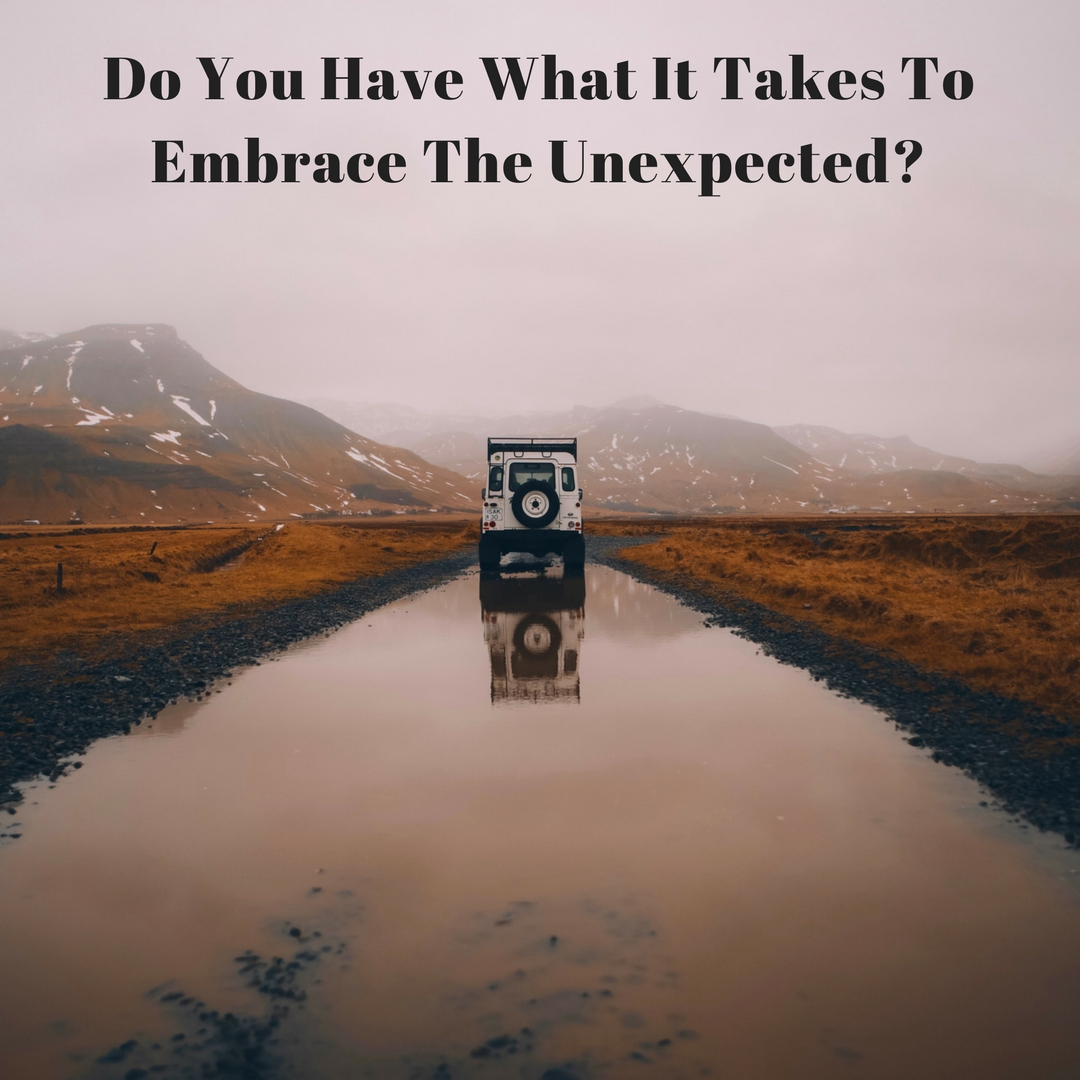 Do You Have What It Takes To Embrace the Unexpected?