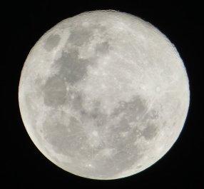 Аяваска диета. Луна