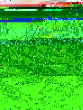 2017 Residents Christmas Party