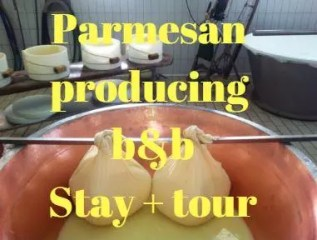 Parmesan cheese farm stay