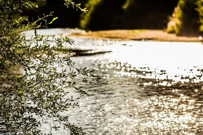 2012_anacruz-es_0174
