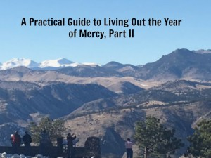 A Practical Guide to the Year of Mercy Part II