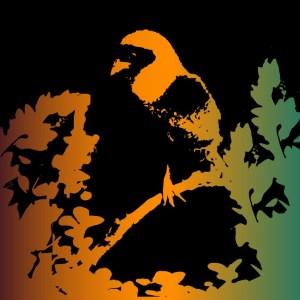 Illustration Of A Weaverbird Colony By Emily Longbrake