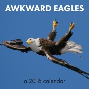 Awkward Eagles 01