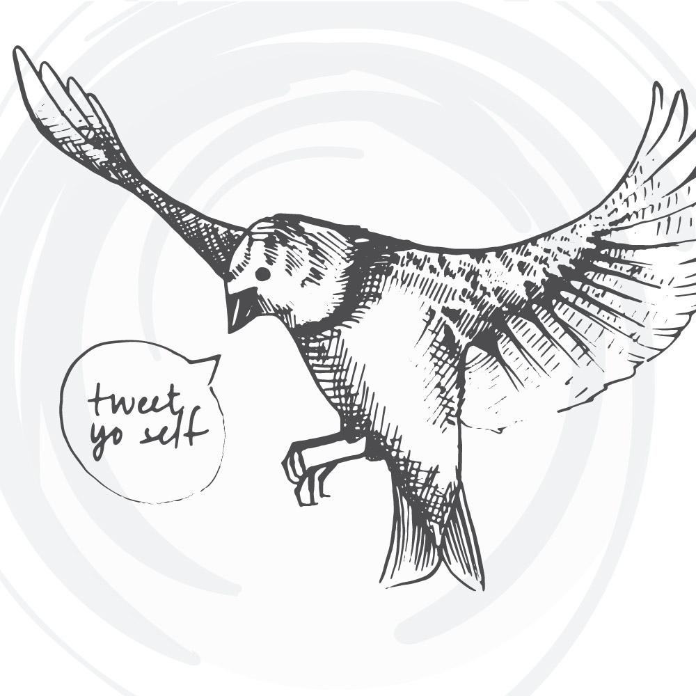 Bird Cards Web 14