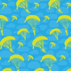 Skydive Arizona 01