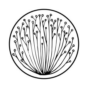 Tiny Round Prints Web 16
