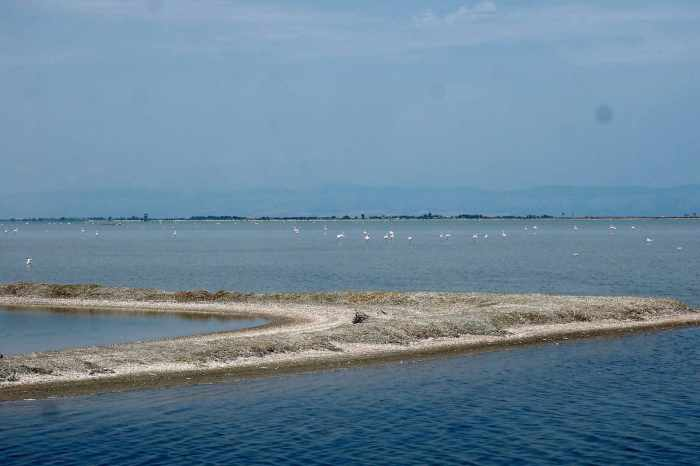 Margherita Di Savoia salt flats