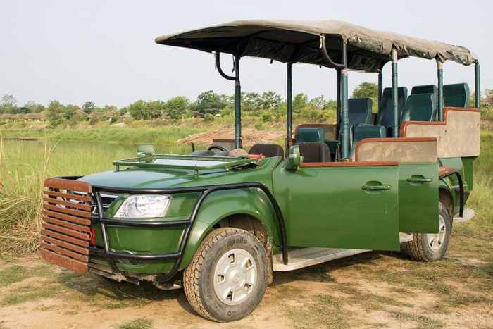 Chitwan Jungle safari with Meghauli Serai