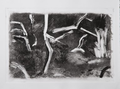 """No. 14, Monotype on Rives BFK, 15"""" x 22"""", 2010"""