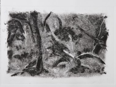 """No. 15, Monotype on Rives BFK, 15"""" x 22"""", 2010"""