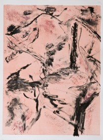 """No. 2, Monotype on Rives BFK, 30"""" x 22"""", 2010"""