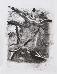 """No. 11, Monotype on Canson Watercolor Paper, 15"""" x 10"""", 2010"""