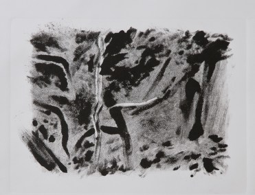"""No. 13, Monotype on Canson Watercolor Paper, 15"""" x 22"""", 2010"""