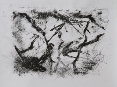 """No. 7, Monotype on Canson Watercolor Paper, 16"""" x 20"""", 2010"""