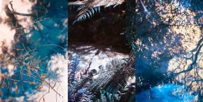 No. 14, Reverie, Landscape Triptych