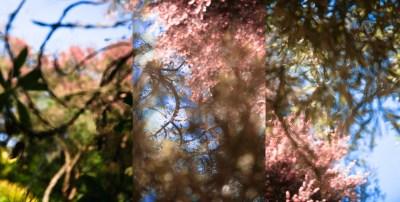 No. 18, Reverie, Landscape Triptych