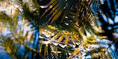 No. 17, Reverie, Landscape Triptych