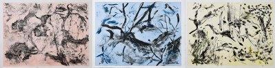 """No. 17, Landscape Triptych, Monotype on Rives BFK, 22"""" x 90"""", 2010"""