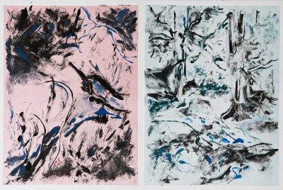 "No. 1, Landscape Diptych, Monotype on Rives BFK, 30"" x 44"", 2010"