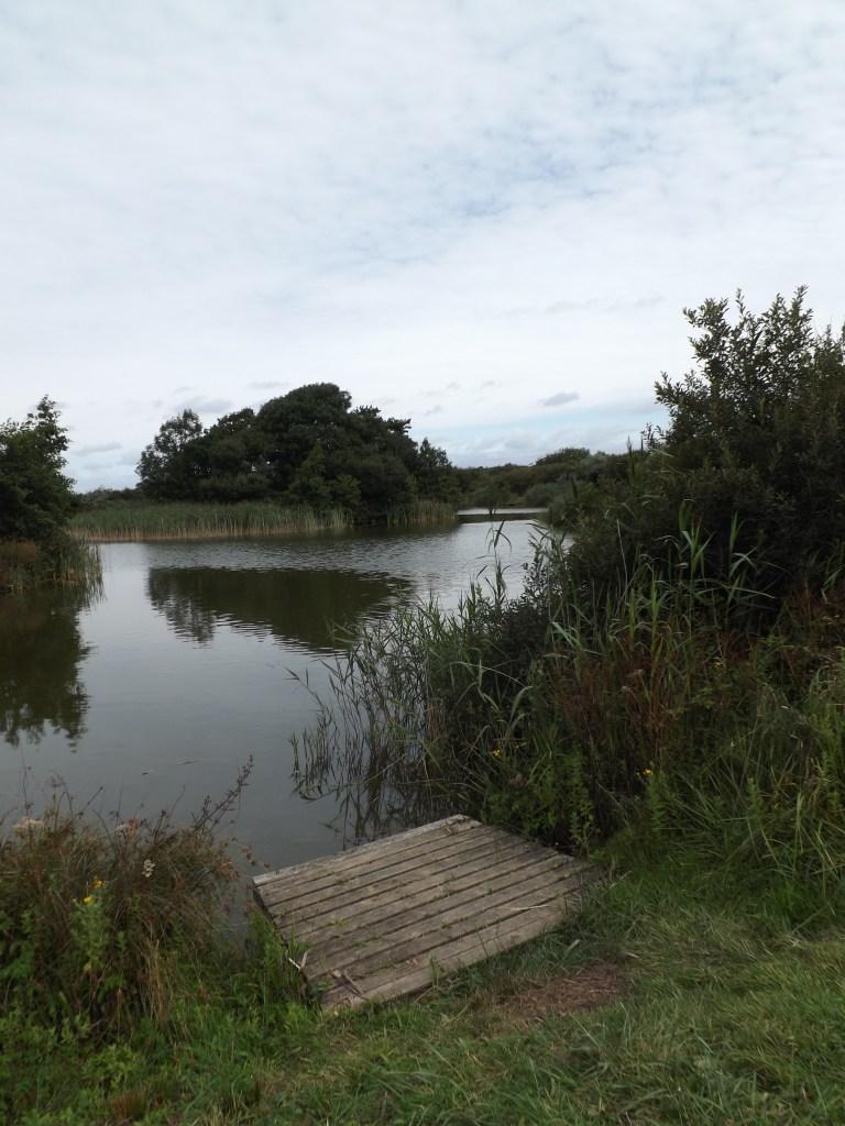 trevella lake
