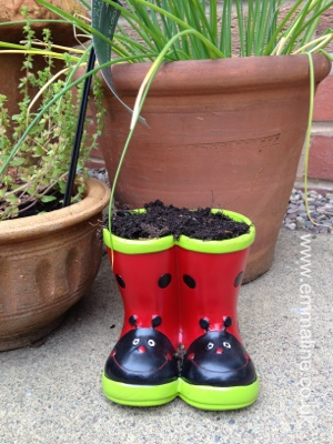 Caterpillar seeds planted in well boots from emmaline.co.uk