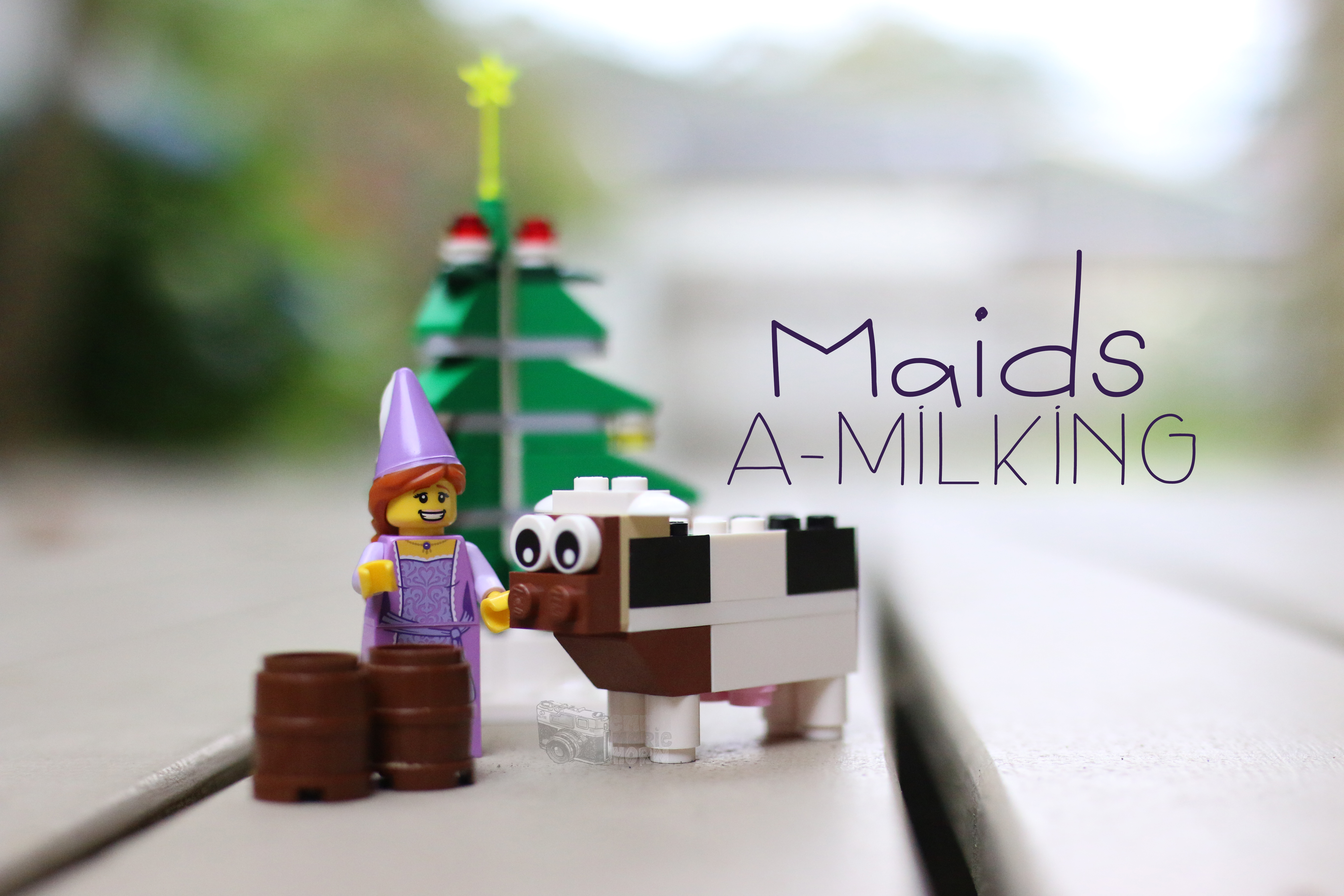Emma Marie Horn Photography Day 8 Maids a-Milking